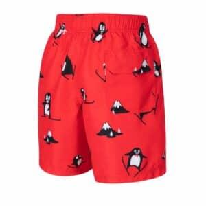 Rode pinguin zwembroek